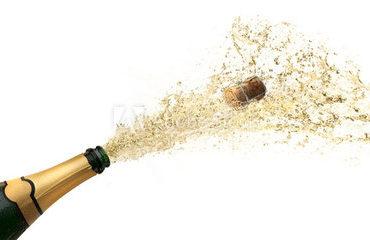 fontänorgasm, champagne, mjukporr